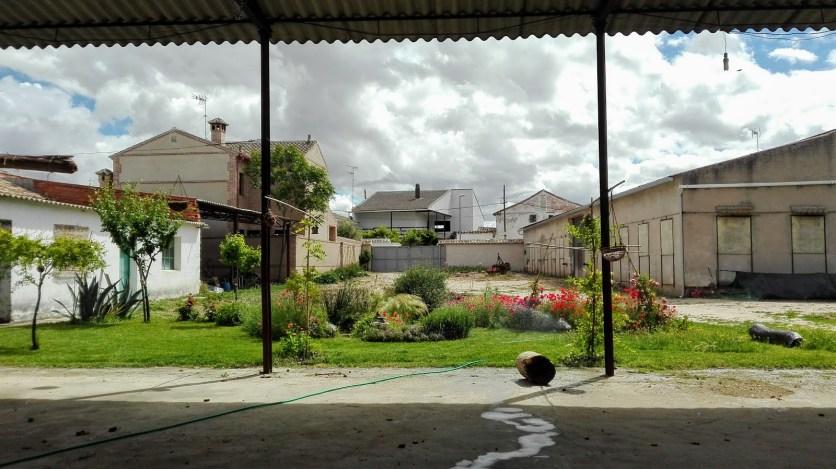 El jardin de la charca 2