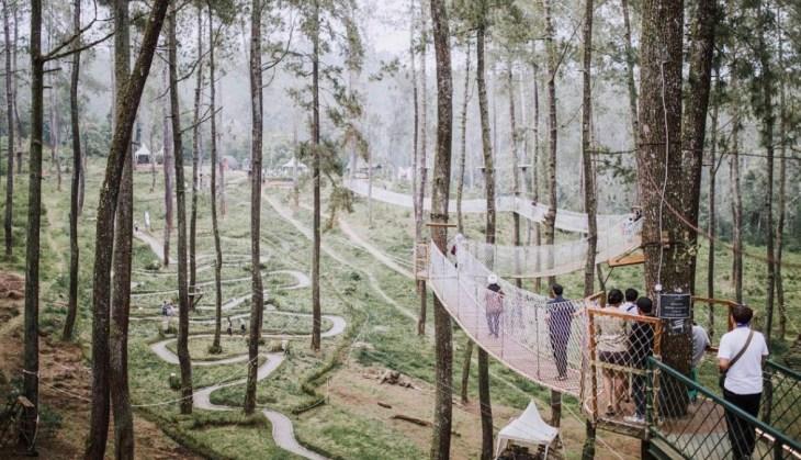 Objek Wisata Orchid Forest Cikole Lembang Bandung yang Mempesona