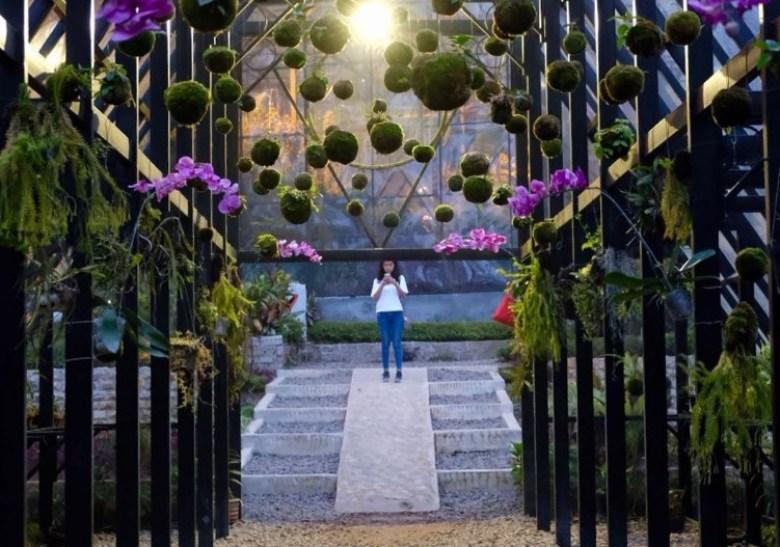 Pusat Budidaya Dan Penangkaran Bunga Anggrek Orchid Forest