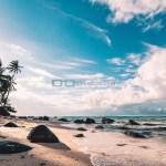 Tempat Wisata Pantai Indrayanti Jogja