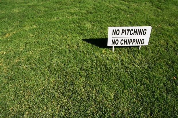 no pitching allowed!