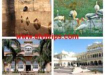भरतपुर पर्यटन स्थलों के सुंदर दृश्य