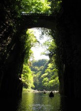 El puente y el final del cañón desde la barca