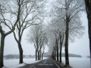 Carretera nevada entre Bélgica y Luxemburgo