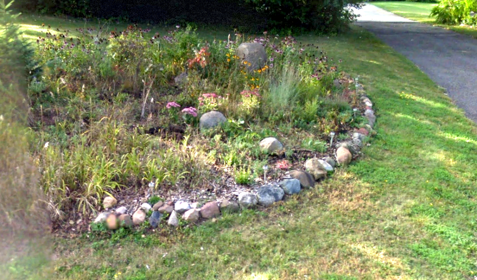 A weed-infested garden bed