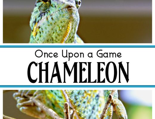 Once Upon a Game - CHAMELEON - a fun and engaging yard game