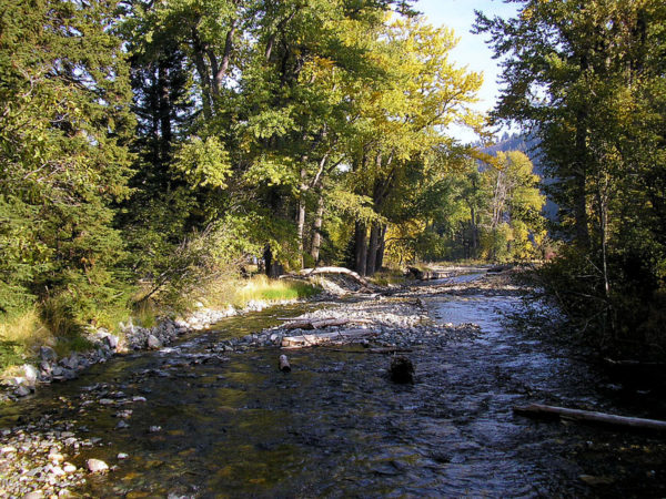 The Wallowa River in the summer time