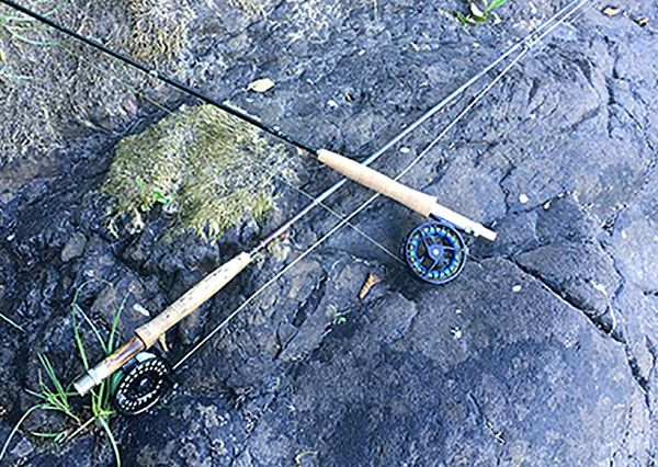 A basic guide to selecting a fly reel for Basic fishing gear