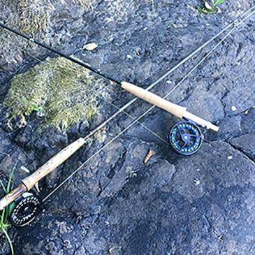 A Basic Guide To Selecting A Fly Reel