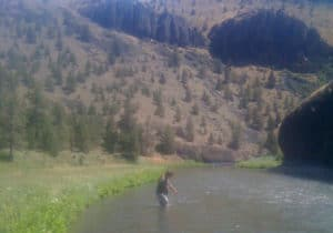 A fly fisherman in the Crooked River landing a trout on a nice summer's day.