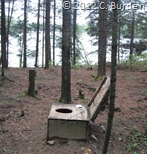 Toilet in the woods