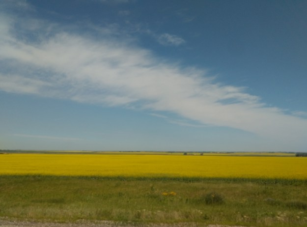 The prairies in Saskatchewan