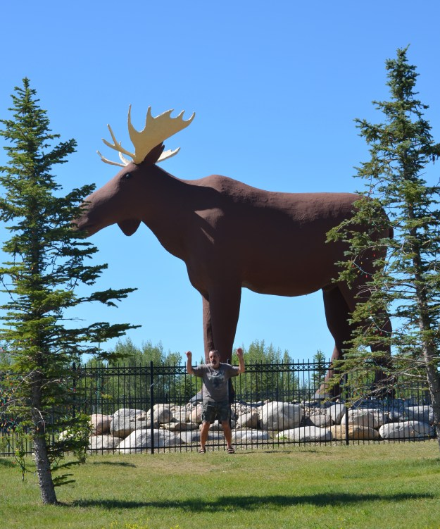Moose Jaw Moose with Matt