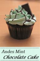Andes Mint Chocolate Cupcake for Pinterest
