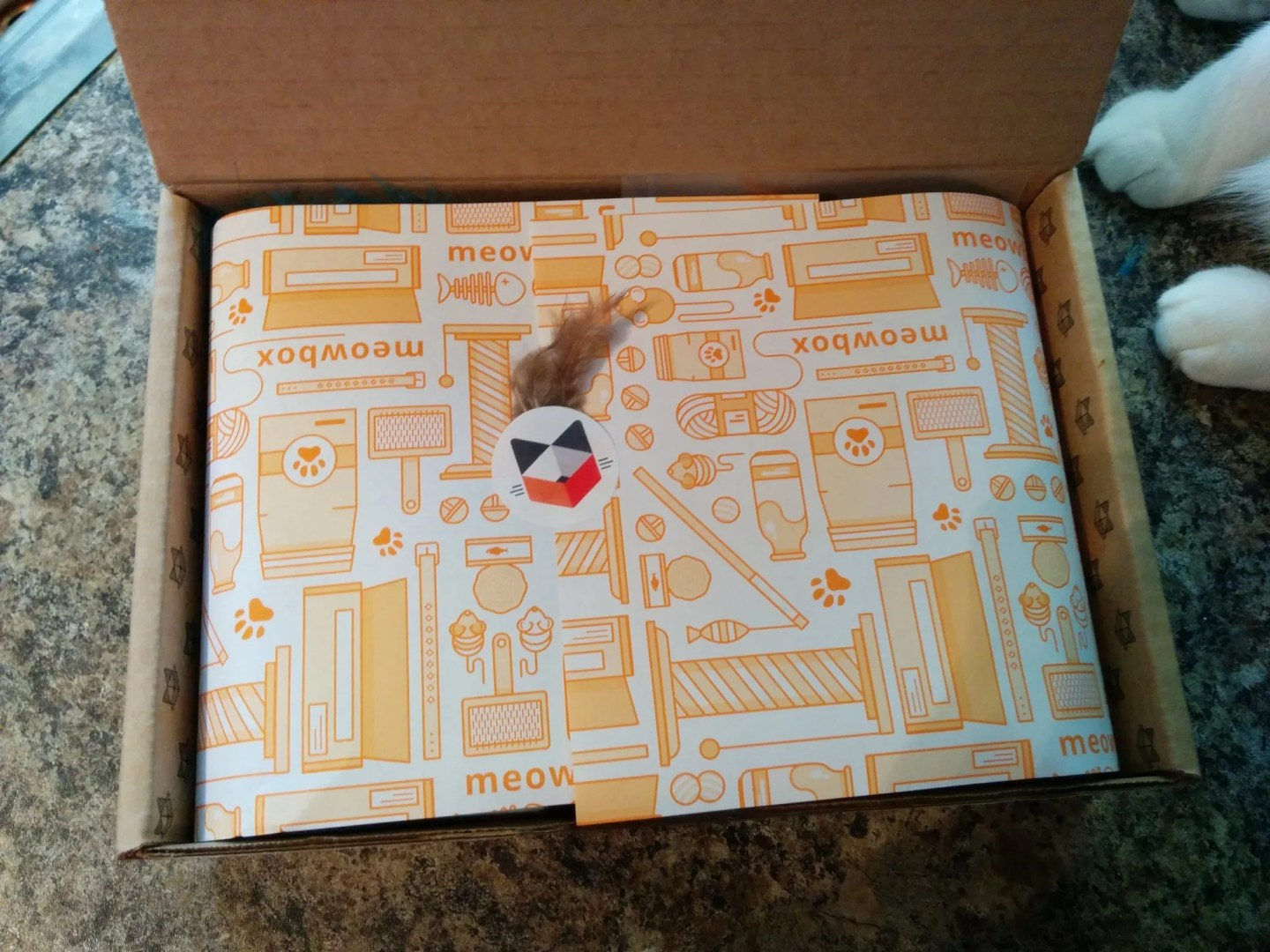 Meowbox May 2016 Subscription Box