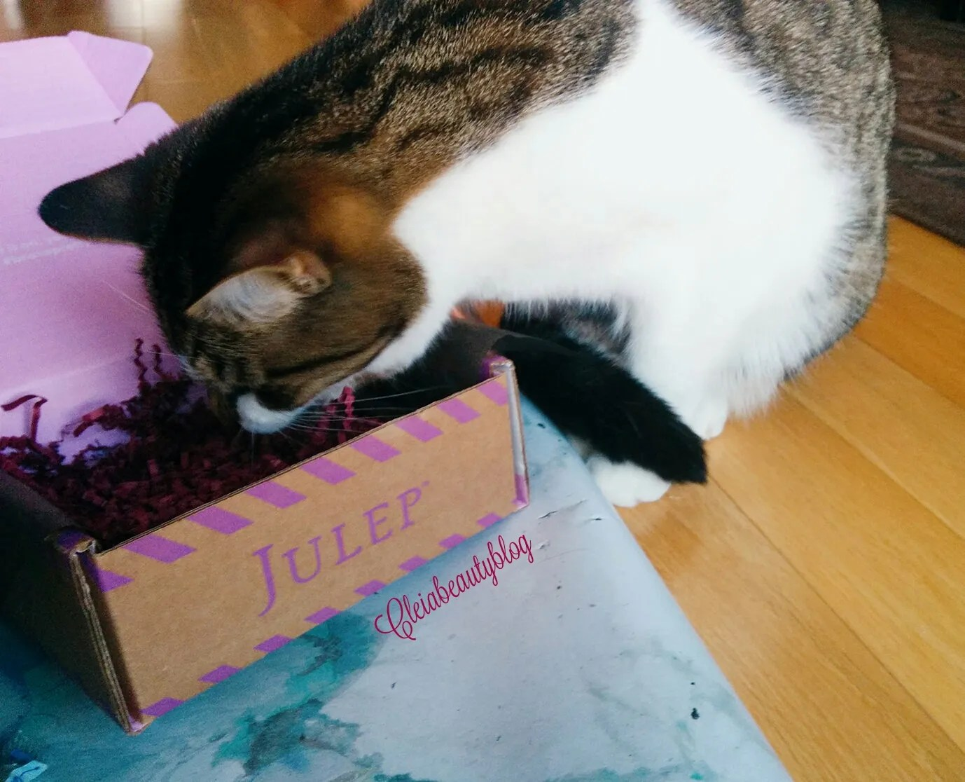2016 December Julep Maven Subscription