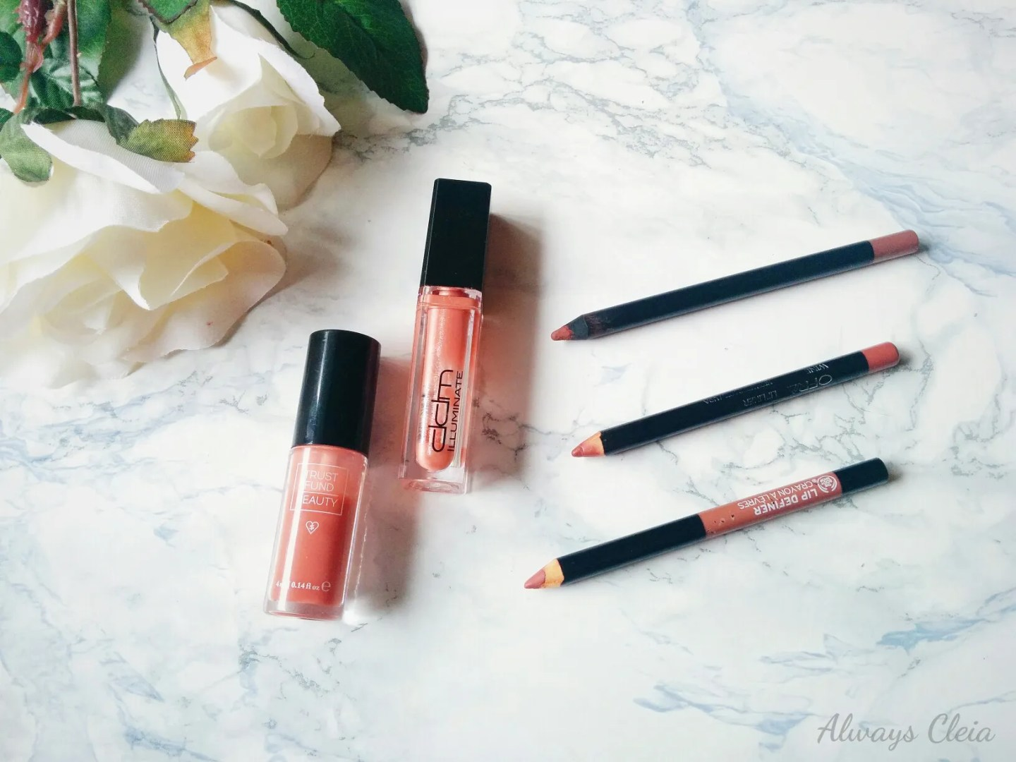 My Beauty Drawer: Lip Glosses & Lip Liners