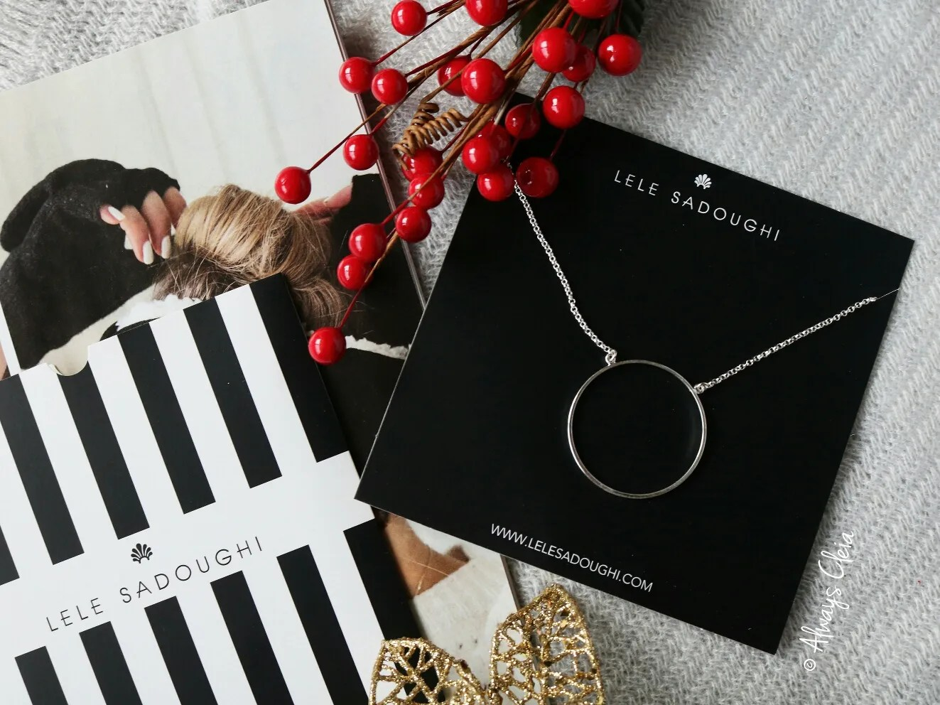 Fabfitfun Winter Box Lele Sadoughi Silver Circle Pendant Necklace