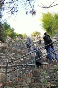 Steps to Corniglia