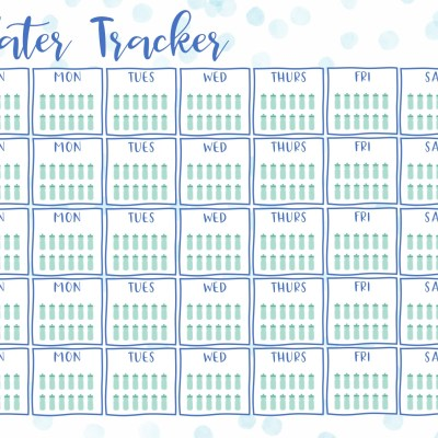 Daily Habit Trackers to Help Make Healthy Choices