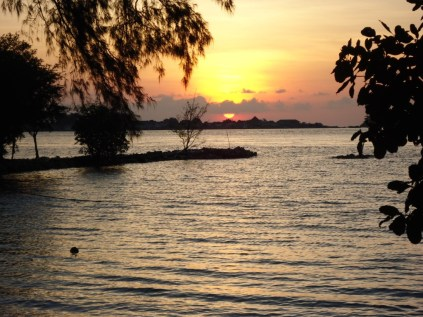 sun setting over the water as we released our turtles