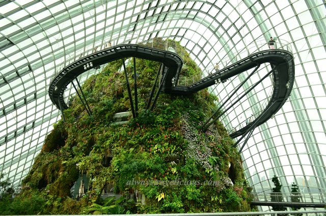 Garden By The Bay Cloud Forest cloud forest @ gardensthe bay, singapore - always travelicious !