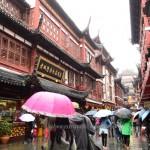 Yu Yuan Garden Shanghai 8