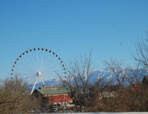 A2F Smoky mountains view with ferris wheel