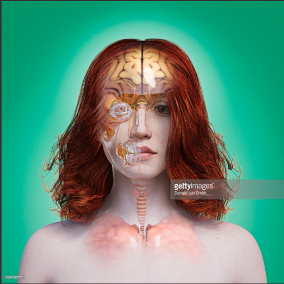 Transparent Woman. Photo Credit: Donald Iain Smith - 764780717. gettyimages.com. INTJ Mastermind: Quantifying You. Alwaysuttori.com