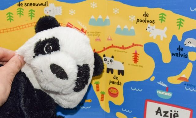 Panda met China