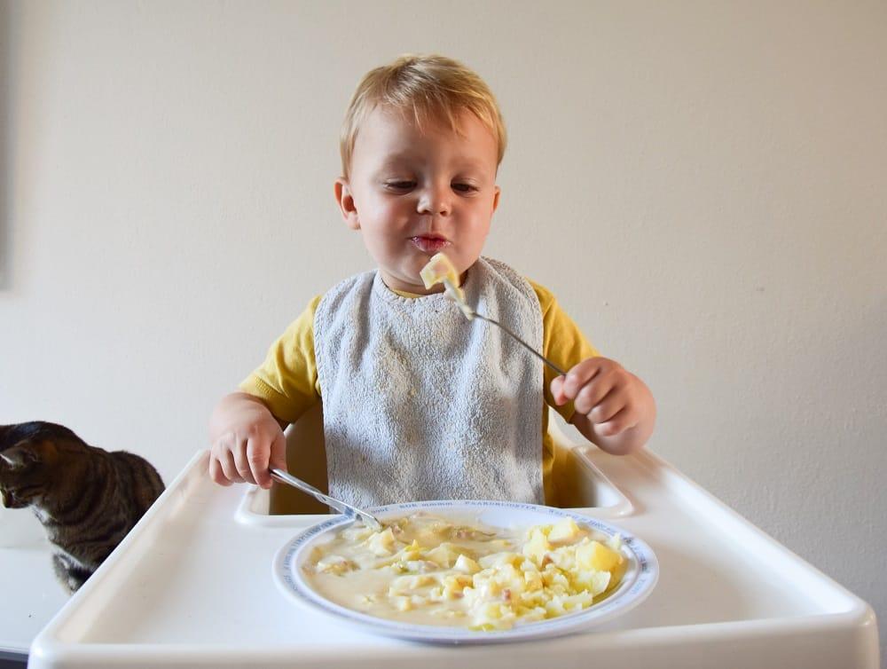 dreumes-eet-witlof-met-kaassaus