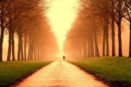 Ortalama bir insan, ömrü boyunca dünyanın çevresini yaklaşık üç defa dolaşacak kadar yürür.