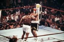 """Muhammed Ali'nin unutulmaz sözleri """"Kelebek gibi uçarım, arı gibi sokarım"""""""