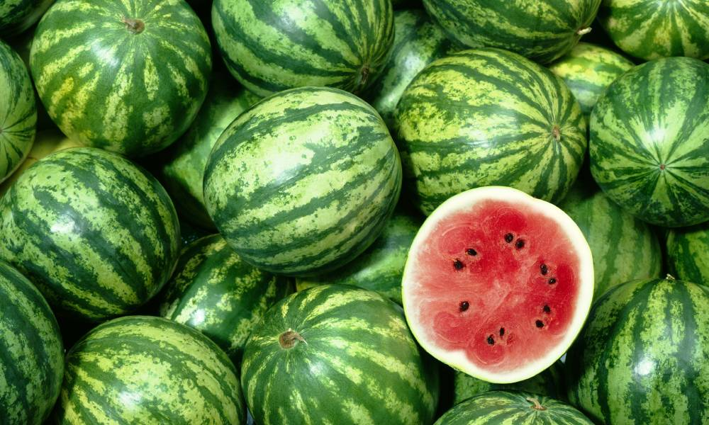 bunch of watermelons with one sliced in hald