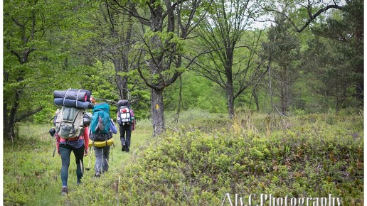 Quehanna Trail | Adventure Photography