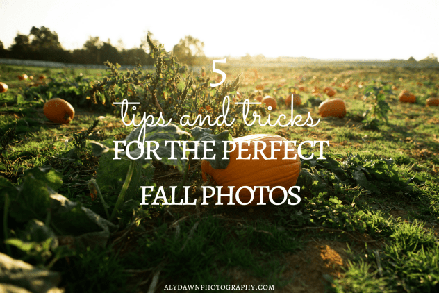 5 Tips and Tricks to Get the Perfect Fall Photos
