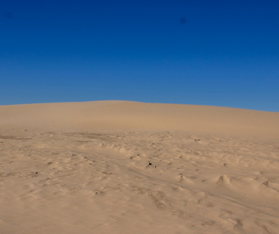 Photograph of sand on a sunny day.