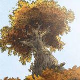 Shane's tree