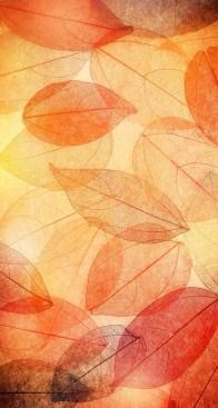 Shadow Leaves