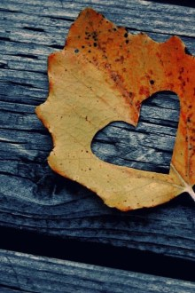 The <3 Leaf