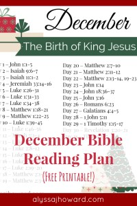 December Bible Reading Plan | alyssajhoward.com