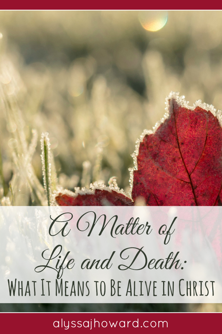 A Matter of Life and Death: What It Means to Be Alive in Christ   alyssajhoward.com