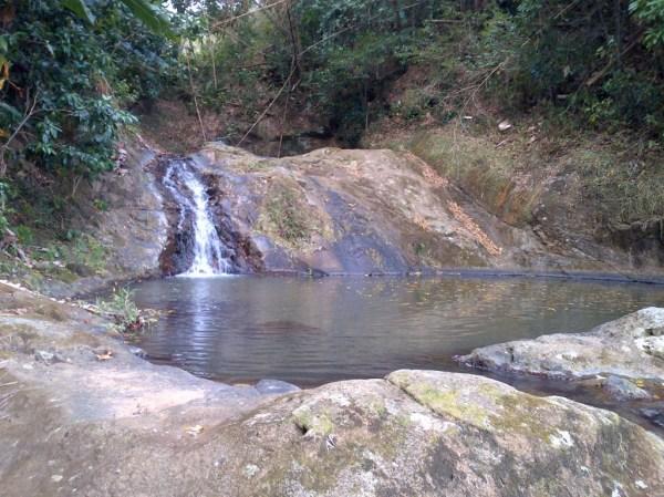 Chapoye, basin in Fonds Nicolas, Le Robert, Martinique