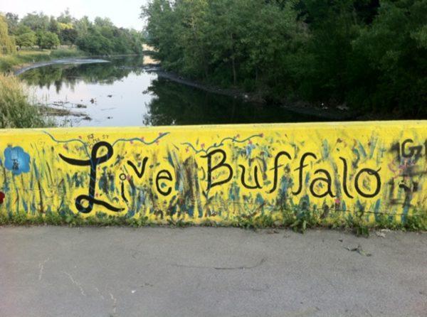 things to do in buffalo, visit buffalo, trip to buffalo
