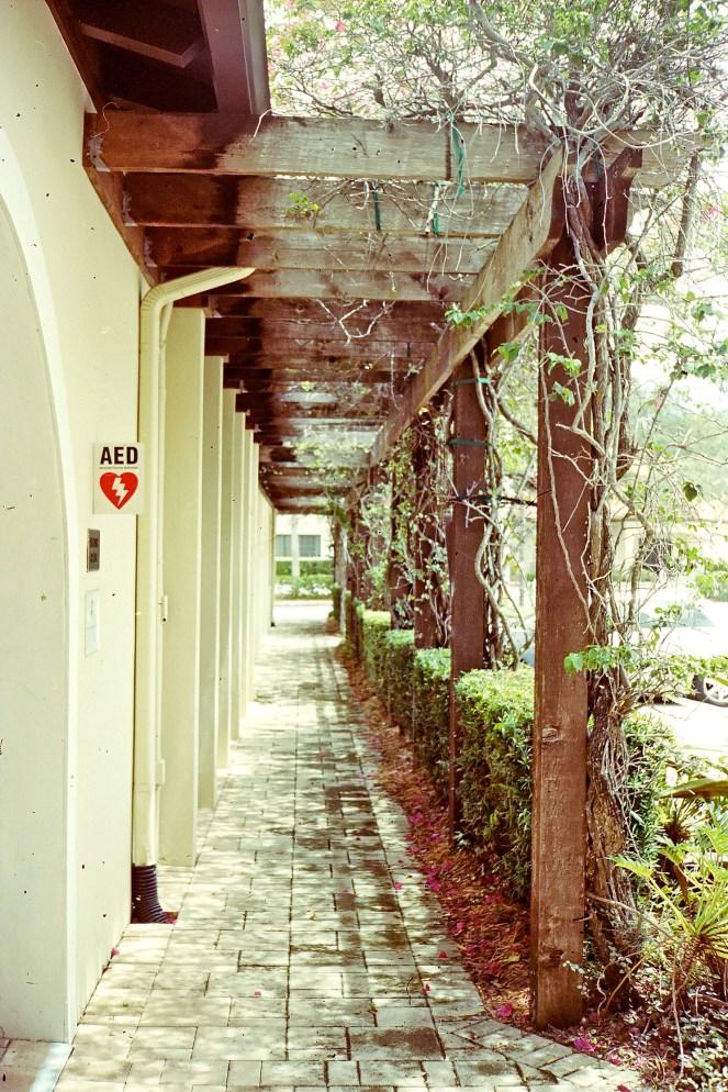 Walkway - Ricoh 500G
