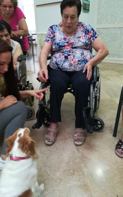 Taller interacción animales Alzheimer