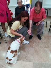 aller interacción animales Alzheimer