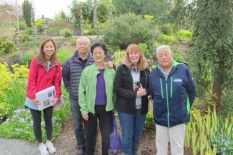 Bellevue Garden Walk