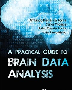 A Practical Guide To Brain Data Analysis PDF
