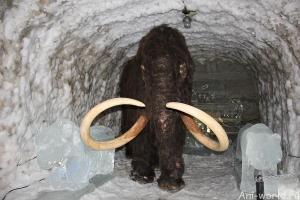 Были ли мамонты в Якутии